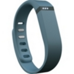 Fitbit Force Wireless Wristband